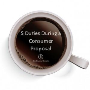 consumer proposal duties responsibilities
